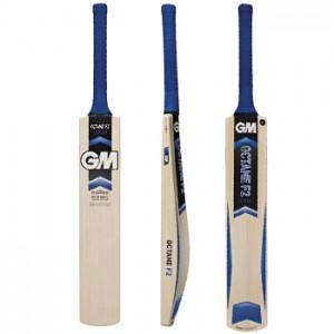 Cricket Bats for Junior Players